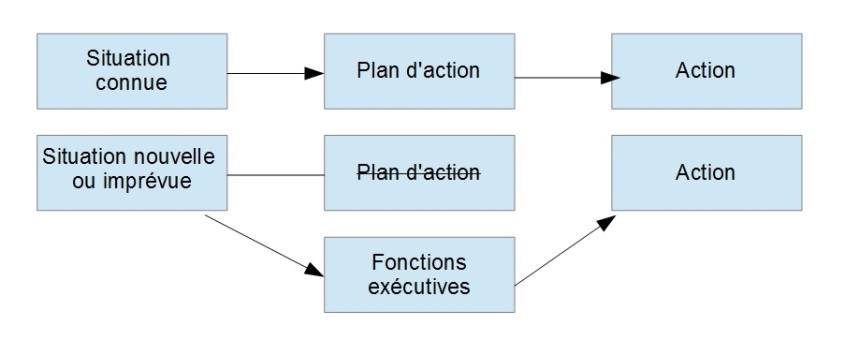 Fonctions executives definition 1