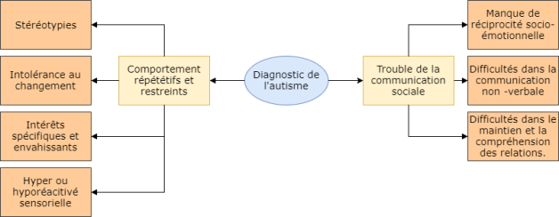 Autisme DSM