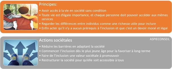 inclusion1